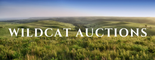 Wildcat Auctions logo